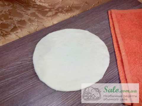 Домашняя пицца в духовке с подчеревком